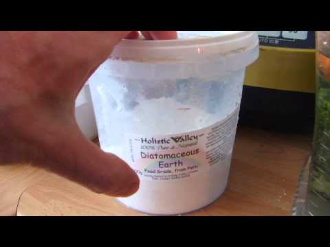 Good Nutrition Healing Smoothie with Diatomaceous Earth